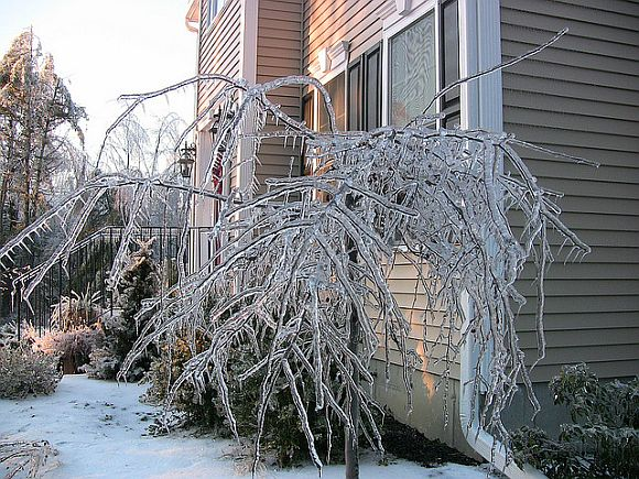 IceStorm How To Protect Your Home During An Ice Storm