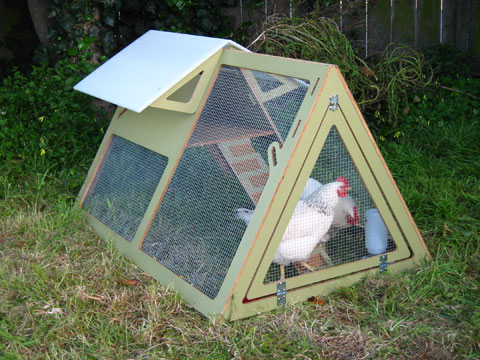 chicken crib Chicken Cribs: The Next Design Frontier