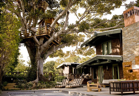 luxurious tree house high tech luxury treehouse designs
