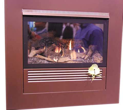 mantis fireplace 15 Fireplaces at the 2010 Builders Show
