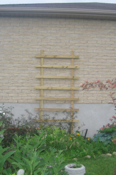 new%20trellis Build a Wooden Trellis for Cheap and Save That Vine