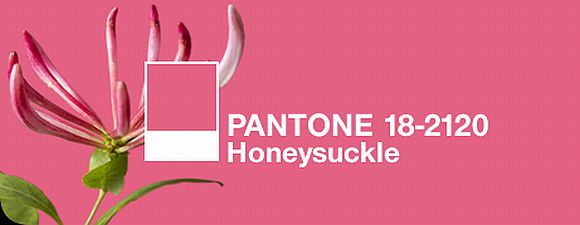 Pantone Color Of 2011 Is Honeysuckle Pink