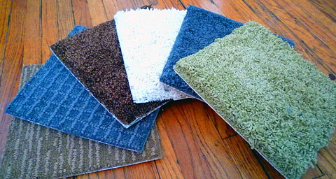 tigressa carpet colors Most Popular Articles of 2010