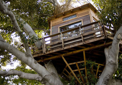 tree house design Luxury Treehouse Designs